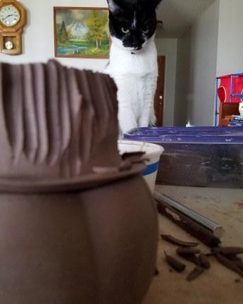 Jack O'Lantern in progress with a watchful eye from Marley.